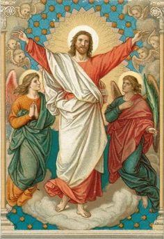Bild Von Jesus