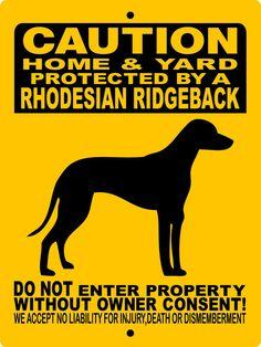 "Rhodesian Ridgeback Dog Sign 9""x12"" ""ALUMINUM""  H2496RR1"