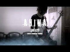 Bass cover SUKEKIYO - ANIMA
