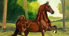 IMÁGENES DE CABALLOS PINTADOS AL OLEO SOBRE LIENZO   Cuadros de Caballos   Pintora Jeanne Newton Schoborg, EE.UU   Pinturas de Caballos  ...