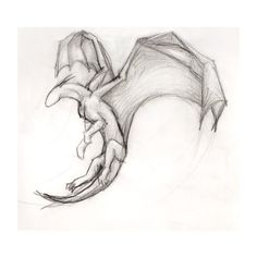 How To Train Your Dragon ❤ liked on Polyvore featuring drawings and extras