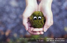 Introduction to Herbs for Kids: Meet My Friend, Herb!