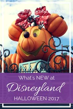 Are you headed to Disneyland this fall? We've got the scoop on everything new for Halloween this year | tipsforfamilytrips.com | Southern California | Mickey's Halloween Party | family vacation ideas | travel | Disney tips and tricks Disneyland October, Disneyland Tips, Disneyland California, Southern California, Mickey Halloween Party, Disneyland Halloween, Happy Halloween, Disney Day, Disney Tips