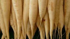 Tíz zöldség, amely a sötét oldalon is megterem Bountiful Baskets, Harvest Time, Planting Seeds, Carrots, Fruit, Cherry, Potato, Angel, Gardening