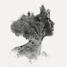 Buy Charlotte II - 2/15, a Black & White on Paper by Laurence Winram from United Kingdom. It portrays: Nude, relevant to: portrait, profile, branches, Sillhouette, beautiful woman, double exposure signed and numbered prints  double exposure portrait of a young girl in profile