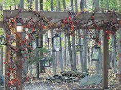 Autumn grapevine trellis wrap