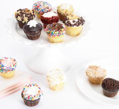 One Dozen Mini-Cupcakes! An amazing flavor array of 6 filled and 6 unfilled cupcakes: Apple Crumb, Fudgy White Rosette, Chocolate Crumb, Cookie Dough, Peanutbutter Cup, Red Velvet, Carrot, Confetti, Coconut Cream, Vanilla Cream, Strawberry Cream, Chocolate Cream!