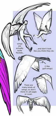 Best Snap Shots drawing tutorial wings Suggestions Want to learn how to draw? You're in the right place. Whether you're a starter searching for som Wings Drawing, Drawing Base, Figure Drawing, Drawing Techniques, Drawing Tips, Drawing Sketches, Sketching, Poses References, Art Poses