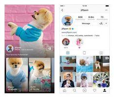 Vous aimez les stories d'Instagram que postent vos amis ou les gens auxquels vous êtes abonnés ? Comme beaucoup d'utilisateurs, c'est presque la principale raison pour laquelle vous ouvrez l'application plusieurs fois par jour ? Instagram l'a bien compris et vient justement de lancer une toute nouvelle application qui n'hébergera que de la vidéo. Cette nouvelle plateforme a pour nom IGTV et elle est disponible depuis hier sur Android et sur iOS.