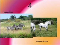 Een aapje in de slagroom.wmv Music For Kids, Places To Visit, School, Youtube, Animals, Africa, Animales, Animaux, Animal