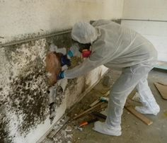 If you see visible mold, do not disturb it. You can inadvertently spread the mold infestation throughout your home. When mold is disturbed, the mold can release microscopic mold spores which become airborne and can circulate inside your home.SERVPRO of Newtown and Southern Litchfield County specializes in mold cleanup and restoration, in fact, it's a cornerstone of our business.