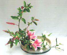 ikebana - moribana