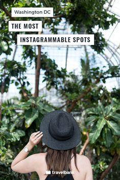 An Instagram guide to Washington DC