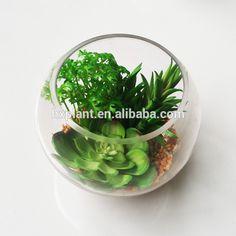 Beautiful artificial mini succulent plant with glass pot