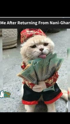 Latest Funny Jokes, Very Funny Memes, Funny Jokes In Hindi, Funny Animal Jokes, Funny School Memes, Some Funny Jokes, Funny Relatable Memes, Funny Animals, Hilarious