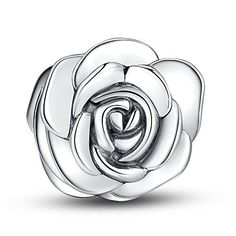 Glamulet 925 Sterling Silver June Flower-Silver Rose Charm Fits Pandora Chamilia Glamulet http://www.amazon.com/dp/B00T2TFGUE/ref=cm_sw_r_pi_dp_-Swxvb1WQYBS4
