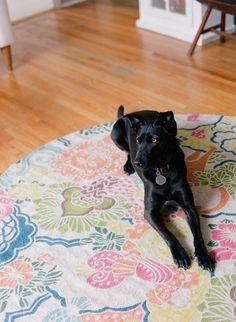 I love black dogs.