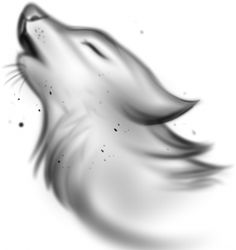 how to draw a wolf spirit step 6