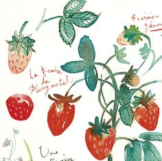 Strawberry Watercolor | luciles kitchen