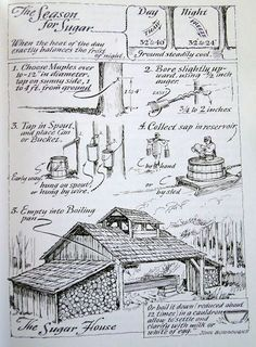 """violetcabin: """"Eric Sloane - Sugar house - the making of maple syrup. From """"The Seasons of America Past"""" by Eric Sloane, """" Survival Life, Homestead Survival, Camping Survival, Outdoor Survival, Survival Prepping, Survival Skills, Camping Diy, Camping Packing, Camping Style"""