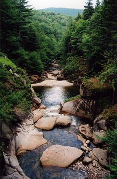 White Mountain National Forest in New Hampshire, United States