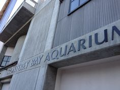 ON LOCATION | Monterey Bay Aquarium on Cannery Row Cannery Row, Monterey Bay Aquarium, Dusk, Beautiful Places, Cinema, Movies, Movie Theater