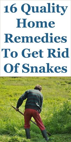 How to use mothballs as snake repellent natural - How to keep deer out of garden home remedies ...