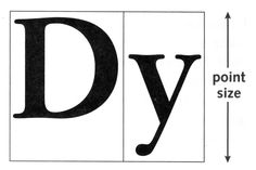 Typographic Anatomy & Measurements | WEB112 | Premium Design Works