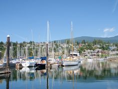 Gibsons harbour- yup this is home. Leadership Development, San Francisco Skyline, Yup, Coaching, Coastal, Beautiful Places, Summer, Travel, Training