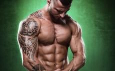 Lean Bulking Machine: Maximize Lean Muscle Growth & Minimize Fat Gains