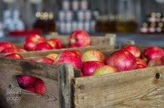 Vergers Rockburn Orchards, barnwood kiosk #vintage #rustic #barnwood #kiosk #applecrate #woodbox