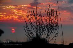 sunset by Nagam #Landscapes #Landscapephotography #Nature #Travel #photography #pictureoftheday #photooftheday #photooftheweek #trending #trendingnow #picoftheday #picoftheweek
