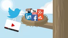 How to Promote Your Company Video on #SocialMedia -  #infographic #videomarketing