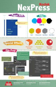 Nexpress Infographic