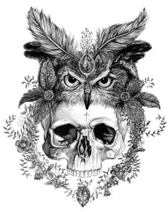 Skull in an Owl Headdress A3 Giclee Print – Sizewell Illustration Club