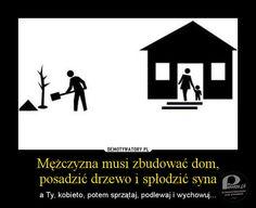 Każdy mężczyzna powinien zrobić trzy rzeczy: – zasadzić drzewo, zbudować dom i spłodzić syna? A co z córkami?
