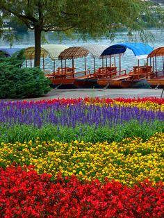 Lake Bled, Radovijica, Slovenia.  Los colores de Bled by lo.tangelini