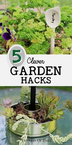 So many simple garden problems can be solved with stuff you probably have in your house. Who knows what good ideas are hiding in your kitchen junk drawer or the back of a cupboard? Come see these five garden hacks and let us know if you have any to share. #sponsored