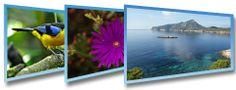 Banco de imágenes gratis, fotos de alta calidad sin Copyright
