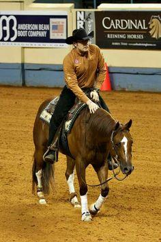 Leclair performance horse