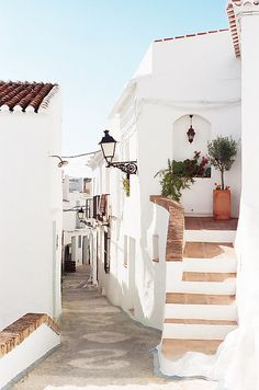 Andalusia, Spain: stairs, empty street, plants, sun, white houses.