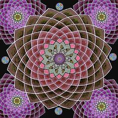 Lotus Mandala by Maya B