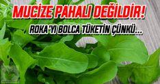 ŞİFA DEPOSU ROKAYI SOFRALARDAN EKSİK ETMEYİN MUCİZE PAHALI DEĞİLD Sağlıklı Bitkiler