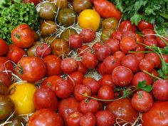 Pascal Poot, Culture Tomate, Fruit, Gardens, Heirloom Tomatoes, Farmer, Growing Weed, Potager Garden
