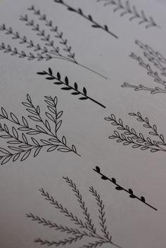 Nancy Straughan: Floral Drawings