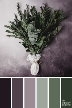 Bunch of Greenery Stalks Color Palette | Color Palette | Color Scheme | Color Palette Inspiration