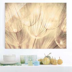 Wanddeko - Glasbild - Pusteblumen Nahaufnahme in wohnlicher S - ein Designerstück von YOURDECOSHOP bei DaWanda