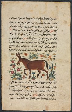 Iran, Timurid Period, 15th century, ink and opaque watercolor on paper, Overall: 24.80 x 15.80 cm (9 3/4 x 6 3/16 inches); Text area: 18.70 x 11.00 cm (7 5/16 x 4 5/16 inches). Edward L. Whittemore Fund 1947.498