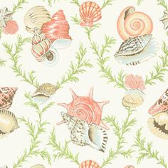Cream Shells Fabric