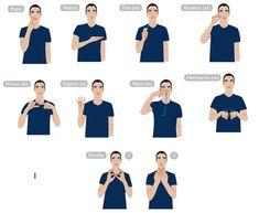 "230 ""MIEMBROS DE LA FAMILIA"" LENGUA DE SEñAS COLOMBIANA (LSC) Libra, Sign Language Chart, Scrap, University, Learning, Alphabet, Frases, Home, Miniature Photography"
